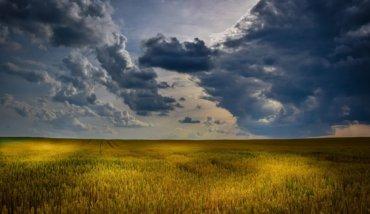夏の草原 夏の夕方